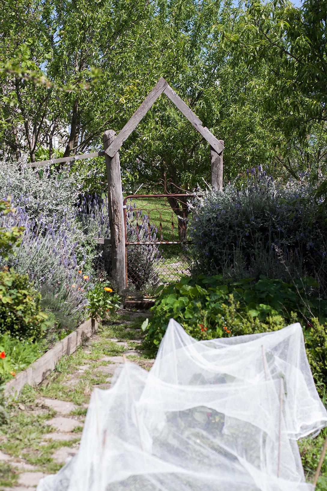 tamsins table garden