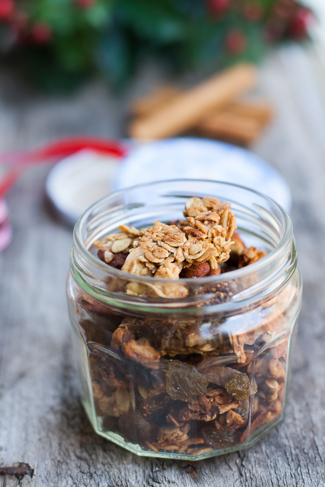The Alimental Sage | Festive Gingerbread Granola