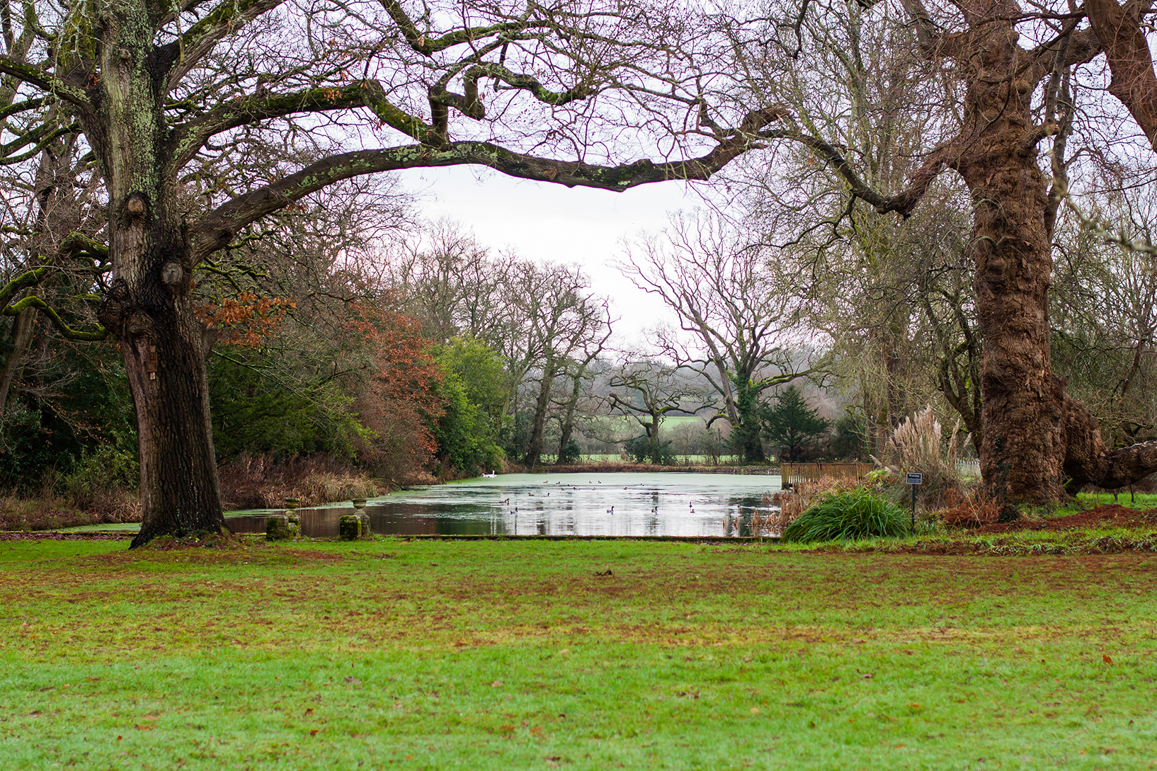 deans court grounds