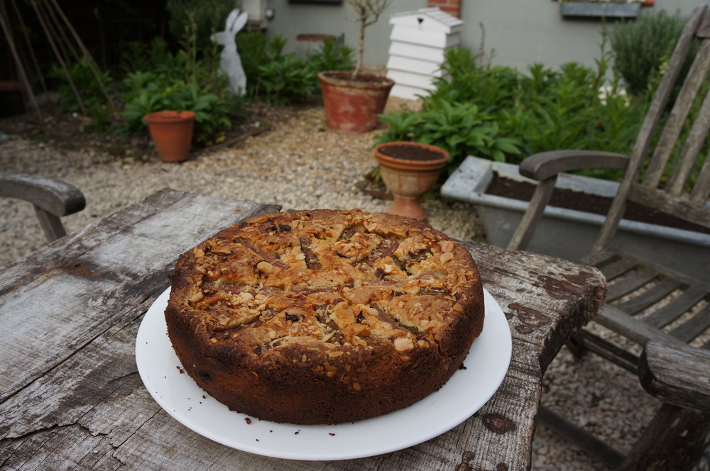 apple and rhubarb cake